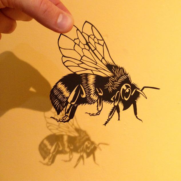 Bumblebee   £70