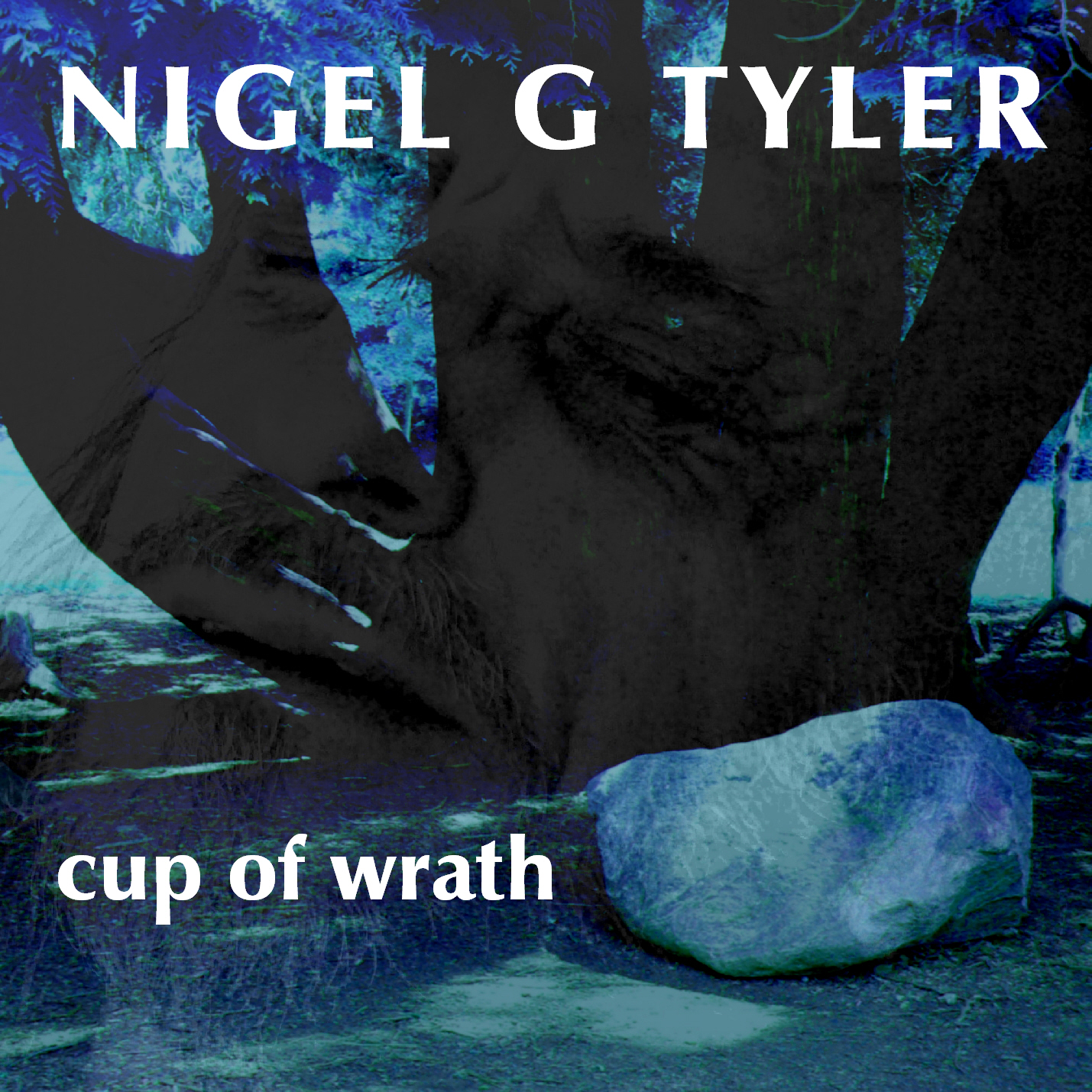 Nigel G Tyler - Cup Of Wrath