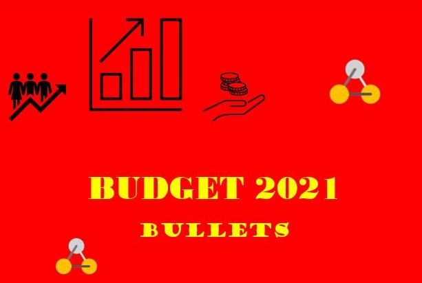 Budget 2021 bullets