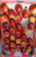 broomhouses_fresh_fruit_apples_edited.jp