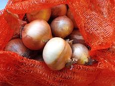 broomhouses_fresh_veg_onions_edited.jpg