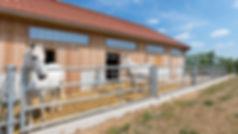 infrastructure en bois massif, bâtiment agricole en bois massif, écurie box pour cheveaux en bois, panneaux de bois 3 plis et 5 plis, triplis, Novatop Imca panels