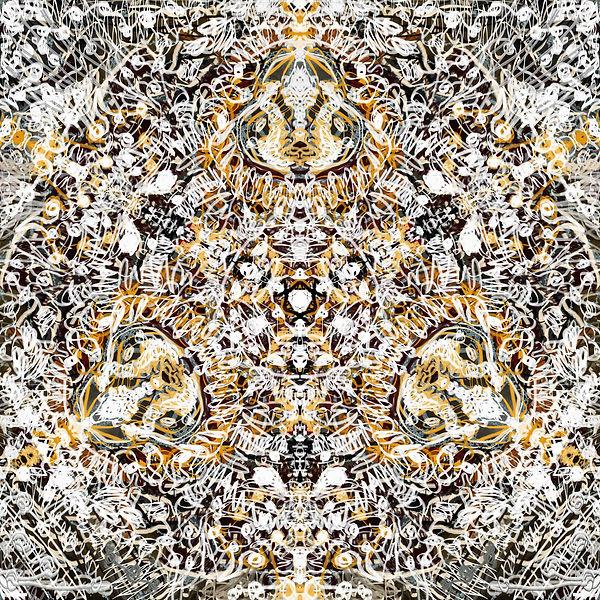 pattern12λ.jpg