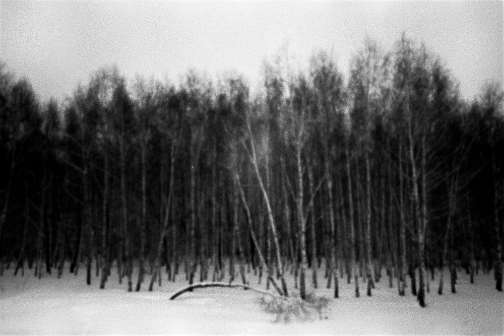©Ljubisa Danilovic