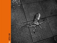 Sete #8 / Anders Petersen