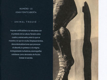 Animal trouvé / Joan Fontcuberta [Zine n°15]