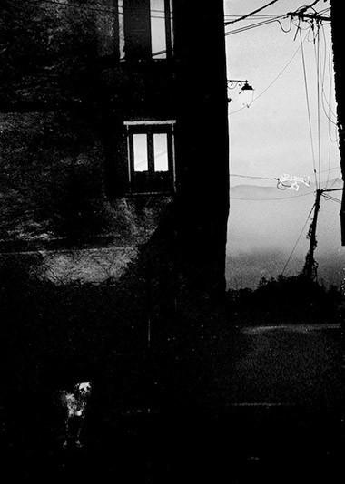 ©Bernard Cantie