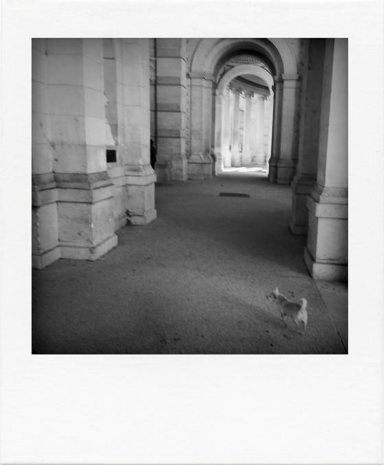 ©siat-2016_WE_Marseille-043.jpg
