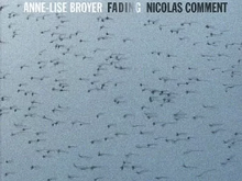 Fading / Anne-Lise broyer & Nicolas Comment