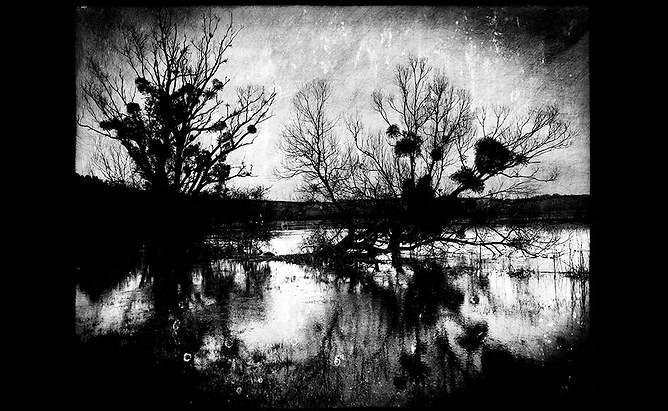 ©Philippe Bréson