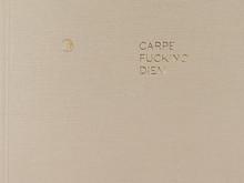 Carpe Fucking Diem / Elina Brotherus