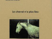 Le cheval n'a plus lieu / Vincent Pélissier & Dolores Marat