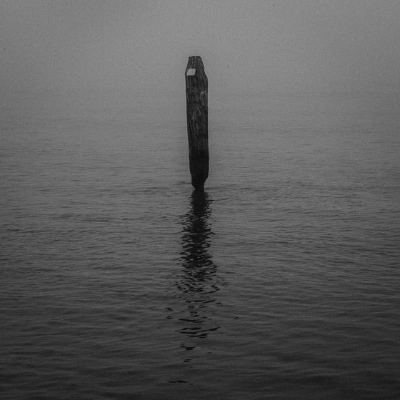 ©siat-2017_Venise_Phil-104.jpg