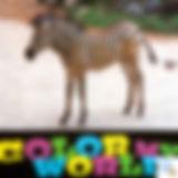 L'impression numérique est idéale pour les photos ou les motifs composés de nombreuse couleurs ou dégradés.