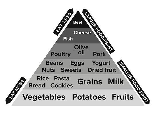 food pyramid final.jpg