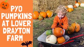 PYO Pumpkins at Lower Drayton Farm