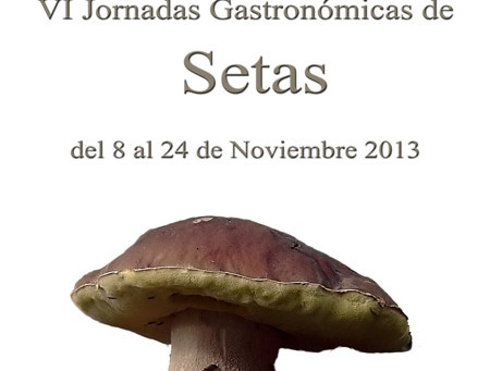 VI Jornadas Gastronómicas de Setas