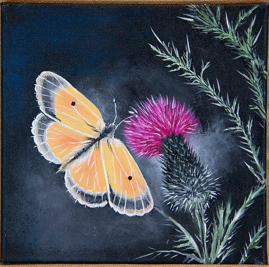 Thistle N Wings