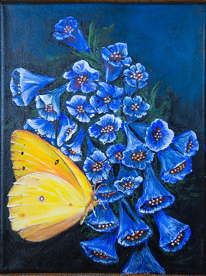 Butterfly and Bluebells