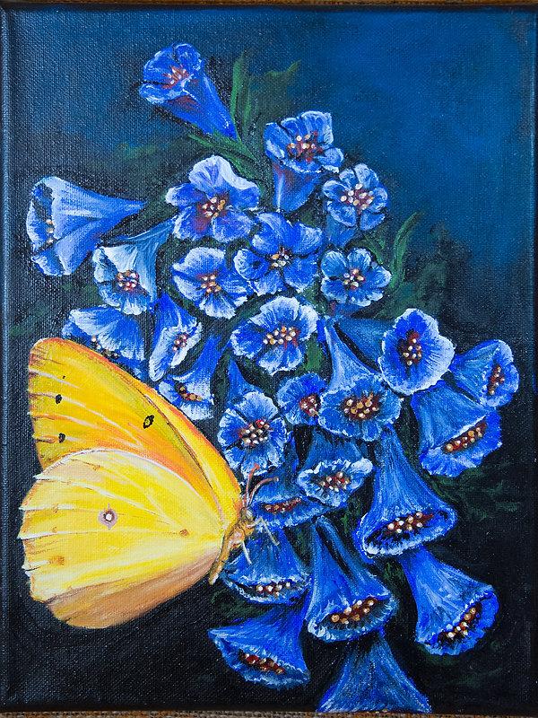 Butterfly--Blue-Bells.jpg