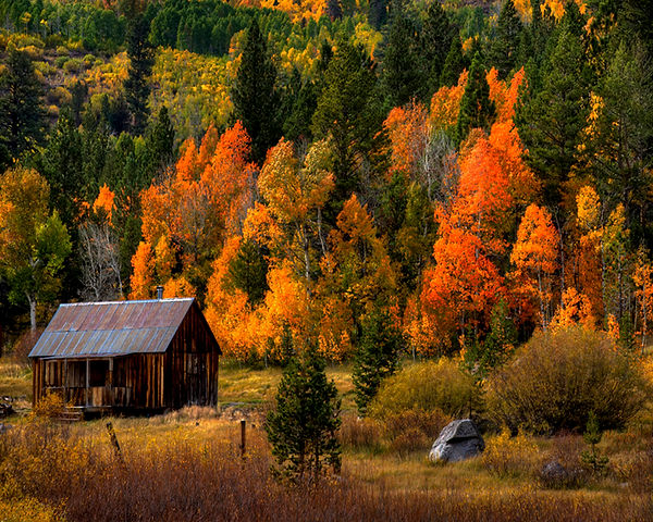 Hope Valley Cabin.jpg