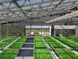 Structure-Hydroponic-Greenhouse-1-ITC-Lt