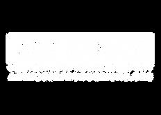 Art House 20 Logo_White.png