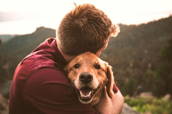 The Happy Doggo_edited.jpg