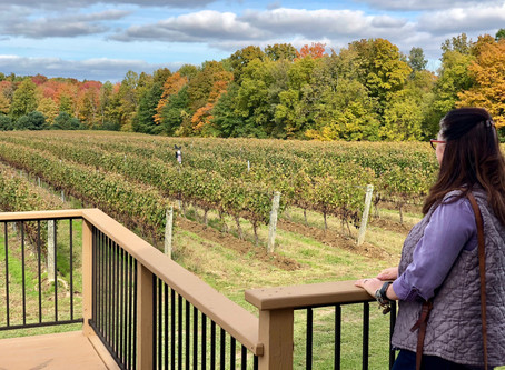 An Ohio Winery Weekend Getaway:              The Secluded Cottages at Vineyard Woods