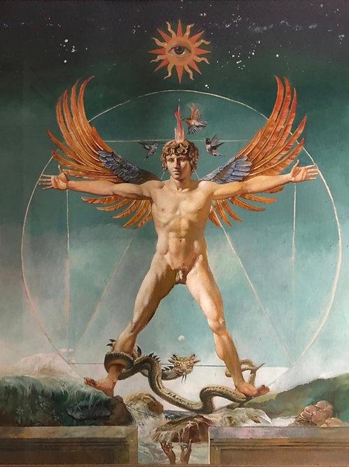 The Vitruvian Man (L'Uomo Vetruviano)