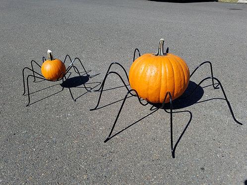 Pumpkin Spider Large