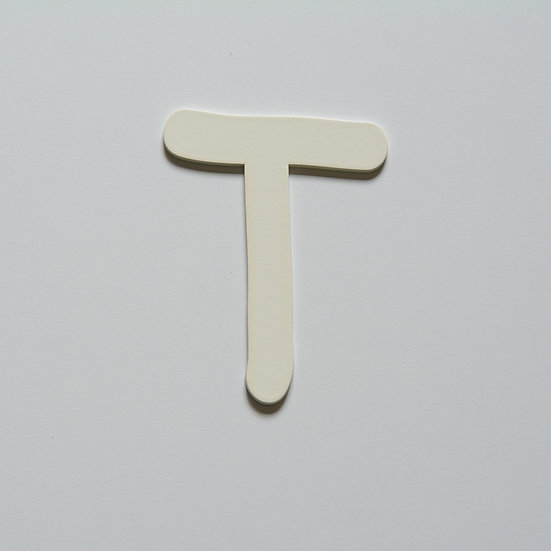 Wooden Letter T (10 color)