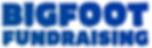 BFF logo 600.png