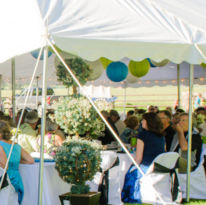Reception tent (2).jpg