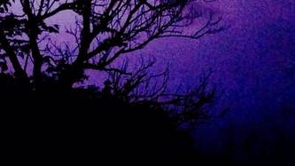Atravesando la Noche Oscura del Planeta