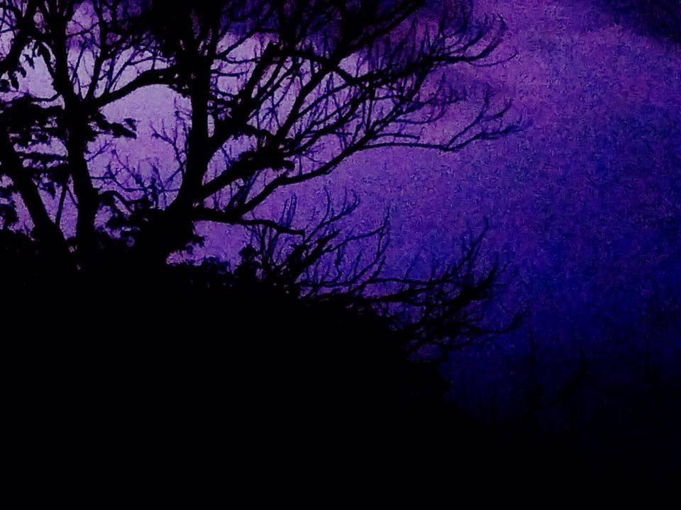 Noche oscura del Planeta