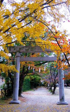 Shinto Shrine.jpg