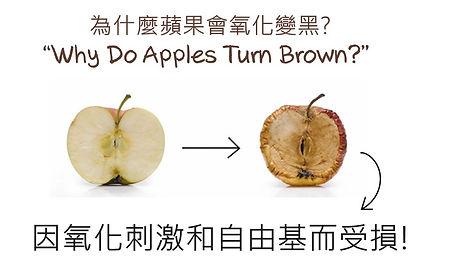 Apple final.jpg