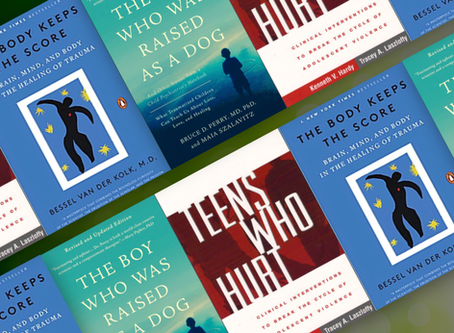 """""""Must Read"""" Books for Professionals Working with Traumatized Youth"""