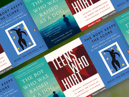 """Must Read"" Books for Professionals Working with Traumatized Youth"