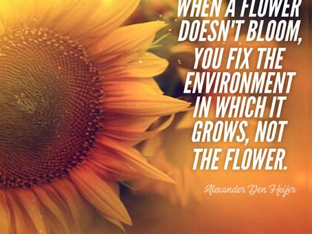 Fix the Environment