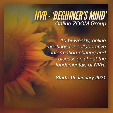 NVR - 'Beginner's Mind'