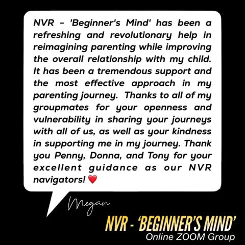 More Great Feedback from our NVR - 'Beginner's Mind' attendees