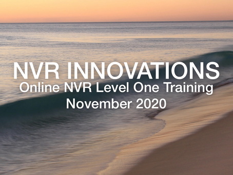 NVR Training Opportunity