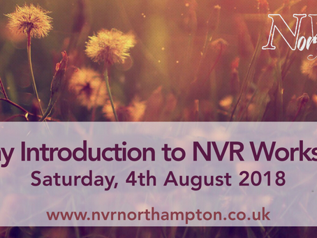 1 day Introduction to NVR Workshop