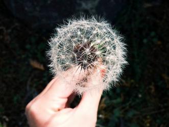 My IBD Story: A Glimmer of Hope….