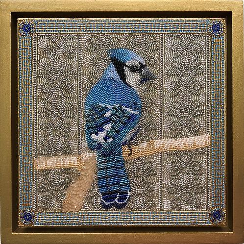 Blue Jay by Katharine Claringbould