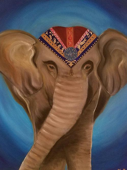 Elephant of India