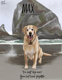 Max- Memorial Commission