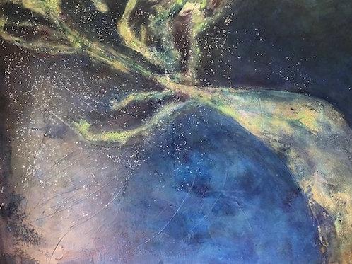 Sea Anemone by Janus Innes